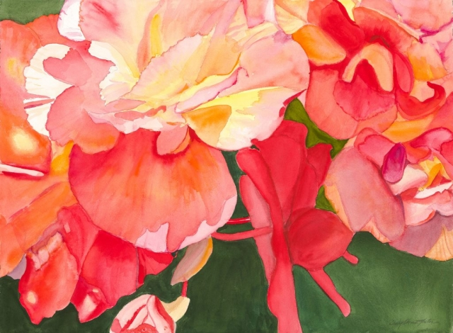Sherry Adams Foster, Begonia Closeup, 30 x 40, watercolor, $550