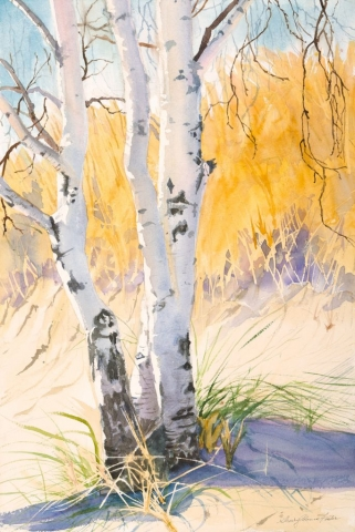Sherry Adams Foster, Beach Birches, 23 x 30, watercolor, $400