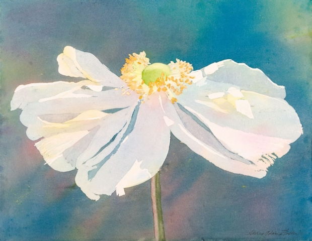 Sherry Adams Foster,Anemone, 20 x 16, watercolor, $200