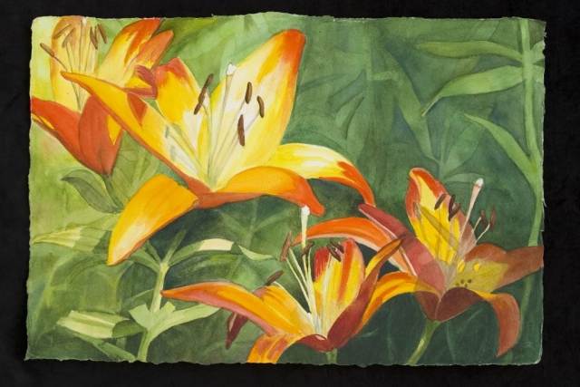 Sherry Adams Foster, Lilies in the Light, 28 x 19, watercolor, $250