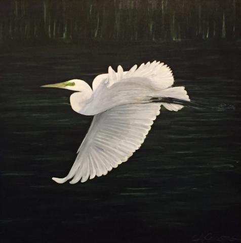 Oil Painting, Night Flight
