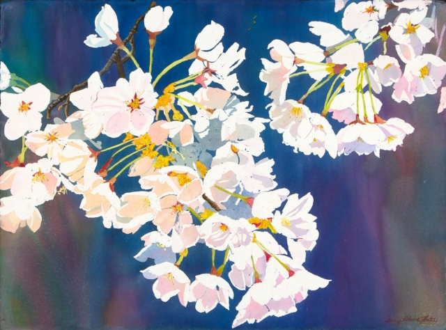 Sherry Adams Foster, Sakura, 30 x 38, watercolor, $600
