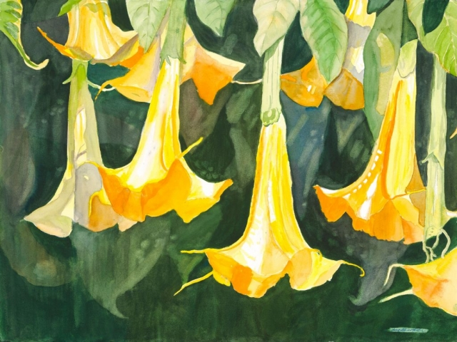 Sherry Adams Foster, Trumpets, 41 x 34, watercolor, $600