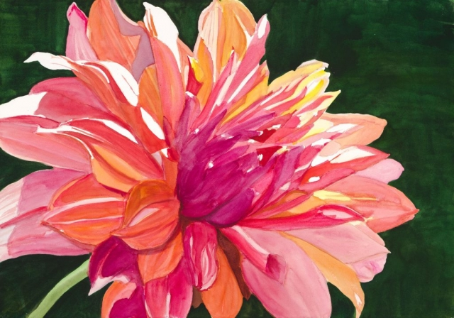 Sherry Adams Foster, Dahlia, 41 x 34, watercolor, $600