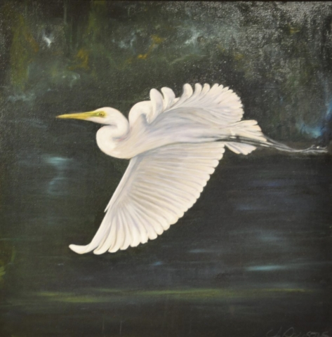 Cindy Parsons Paintings, Graceful Beauty, 28 x 28, oil, $395