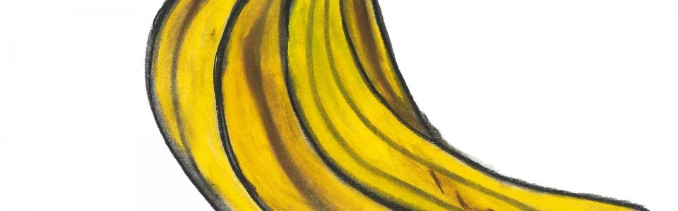 Amy Al-Katib – bananas