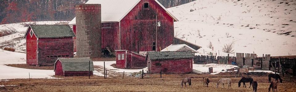 Arnold Berkman – Berkman-Rural Winter