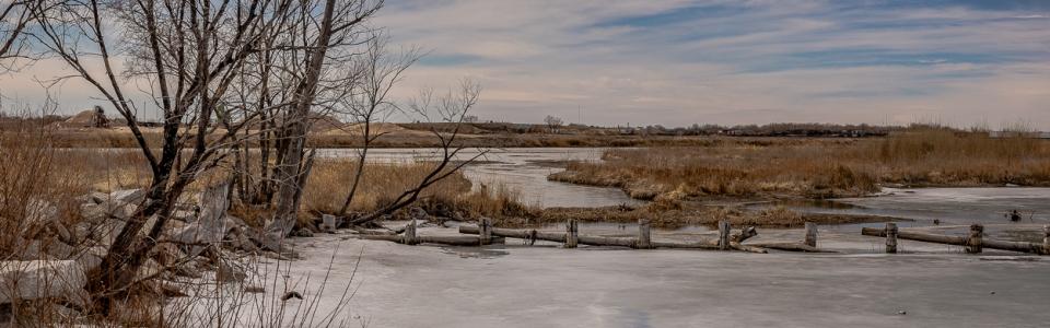 Arnold Berkman – Berkman-Winter Pond