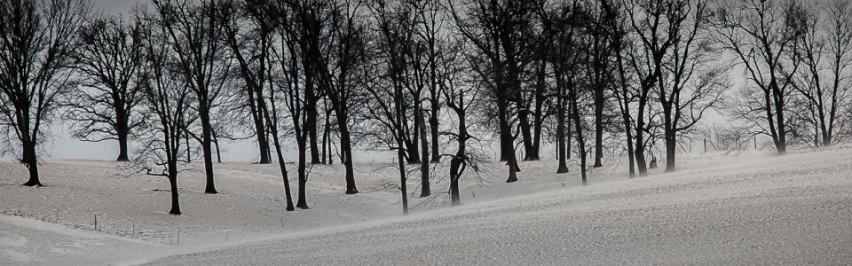 Arnold Berkman – Berkman-Winter Valley