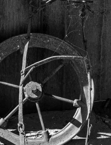 Arnold Berkman-Wagon Wheel, Tasmania-25 x 30-$425.00