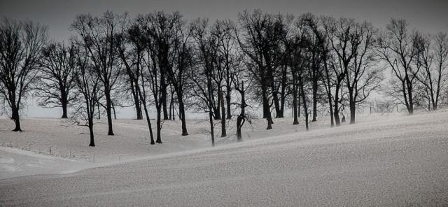 Arnold Berkman-Winter Valley-15 x20-$350